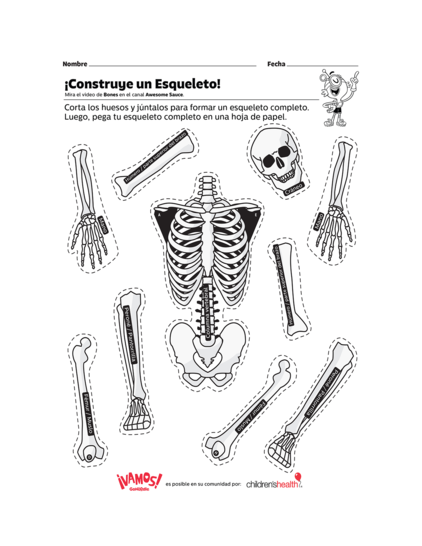 construye-un-esqueleto-image